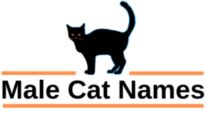 Male Cat Names -Web Footer