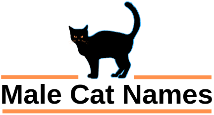 Male Cat Names