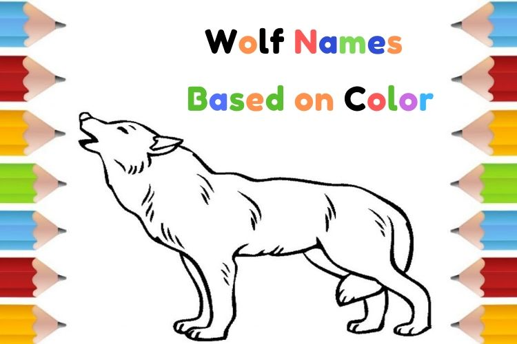 Wolf Names Based on Color