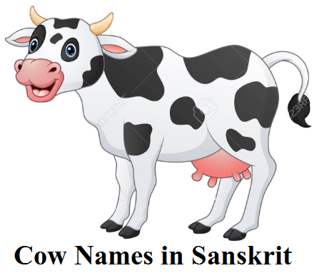 cow names in sanskrit