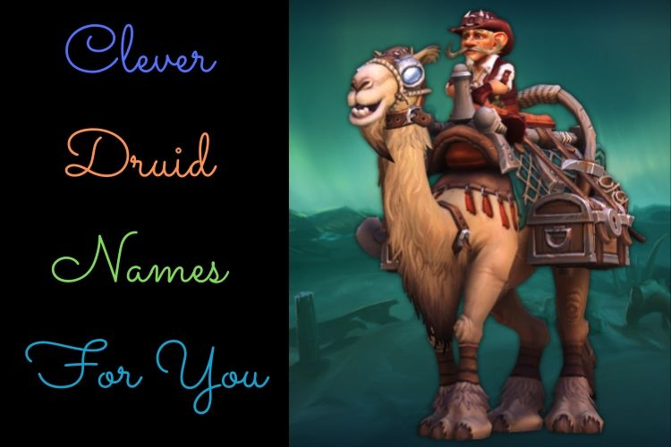 Clever Druid  Names For You