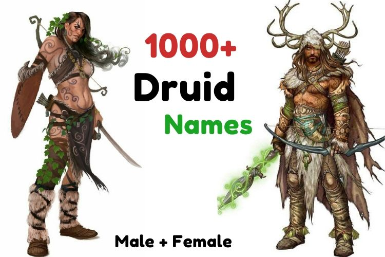 1000+ Druid Names Which is Awesome, Clever and Funny