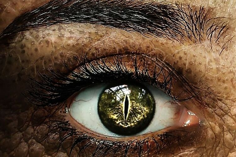 dragonborn eyes