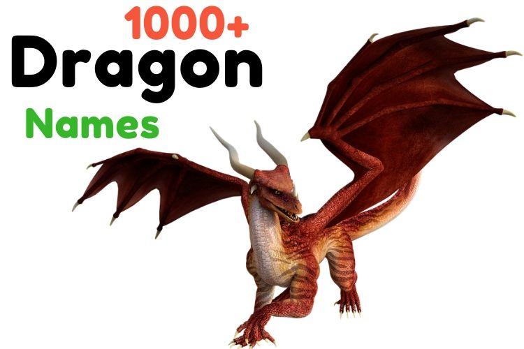 Dragon names