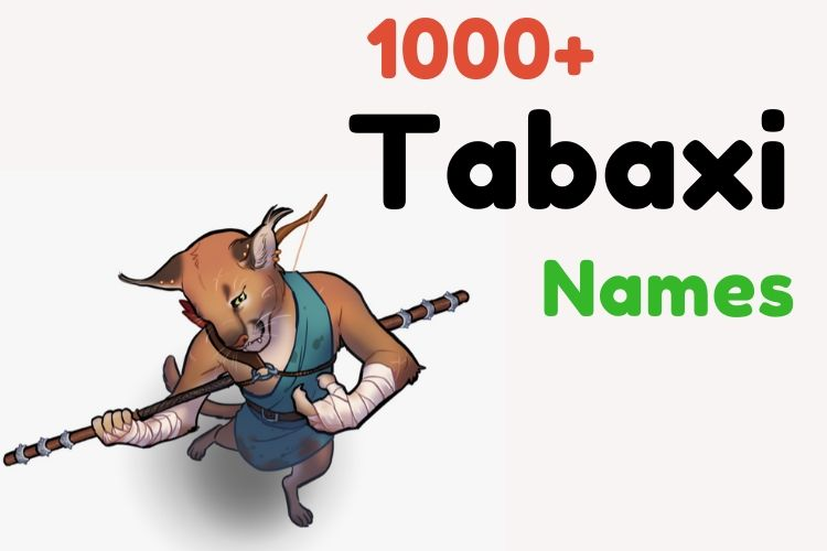 1000 Tabaxi Names Famous Cool Funny Rogue M F If you want to, you can further specialize the character (background, class, alignment.) here are the examples from volo's 1000 tabaxi names famous cool